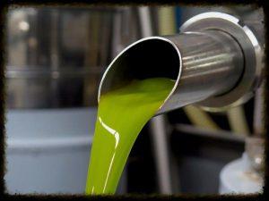 Olive Oil and Balsamic Vinegar Blog