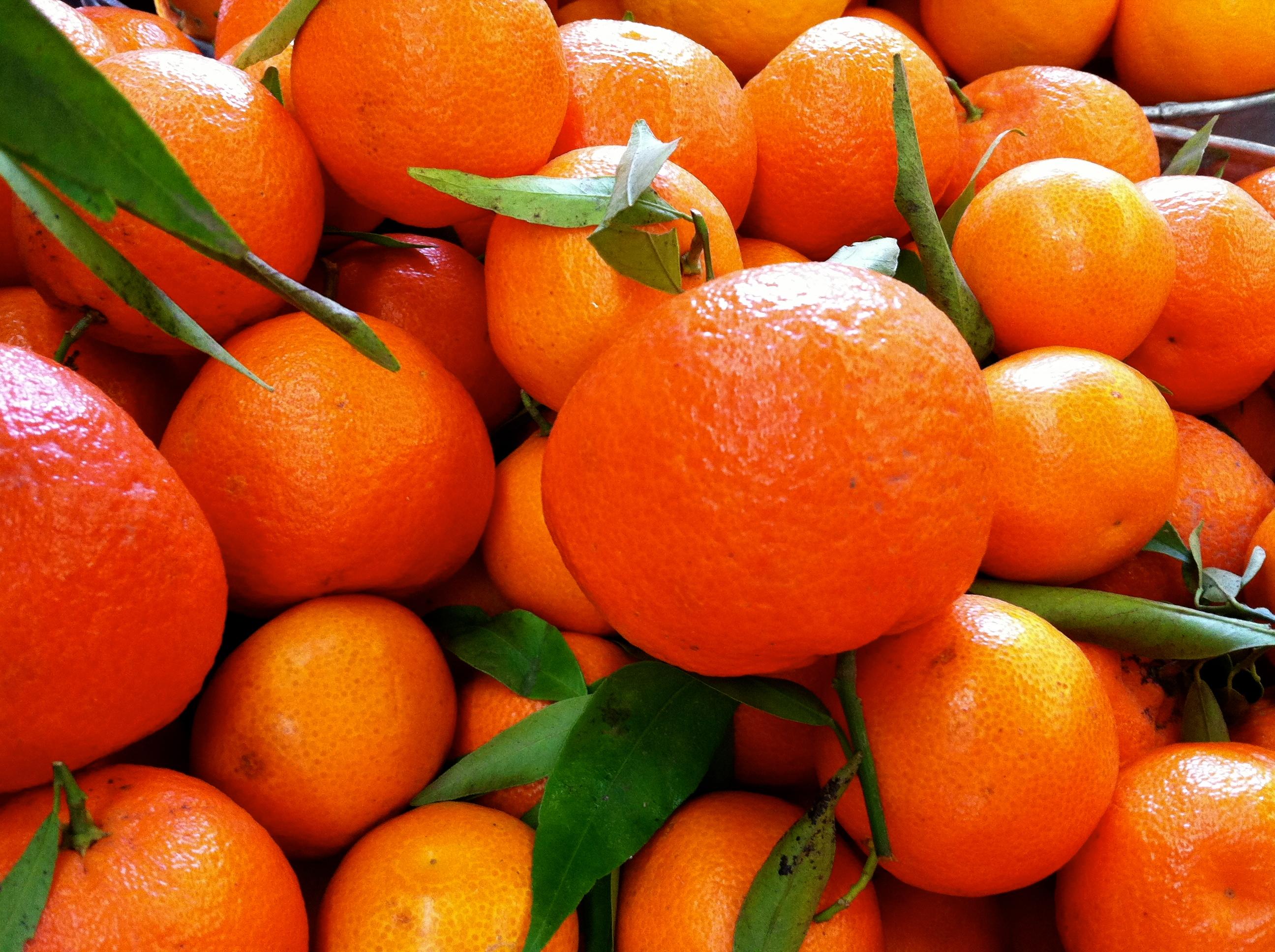 Tangerine barrel aged balsamic evoo marketplace colorado 39 s original olive oil aged balsamic - Mandarina home online ...