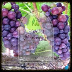 Pinot Wine Vinegar